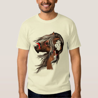 Paint Horse and Feathers Shirt
