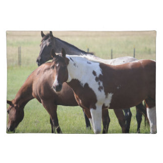Paint Horse and Friends Placemats