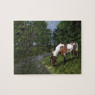 Paint Horse by Forest Stream Jigsaw Puzzle