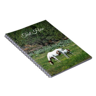 Paint Horse Mare and Foal Personalized Spiral Notebook