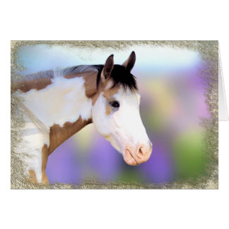 Paint Horse Note Cards