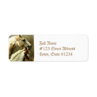 Paint Horse Pair  Mailing Label Return Address Label