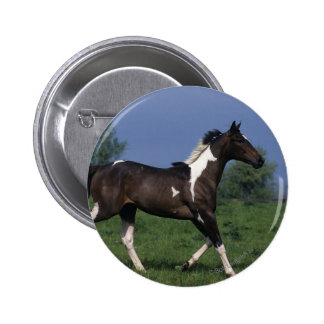 Paint Horse Running 2 2 Inch Round Button