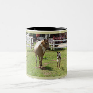Paint mare and Foal Two-Tone Coffee Mug