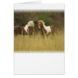 Paint Ponies in Field Greeting Card