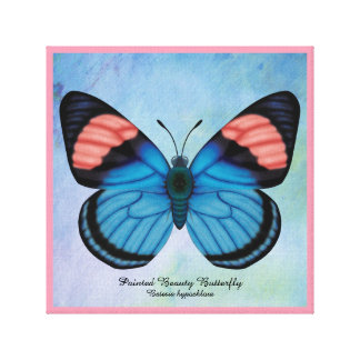 Painted Beauty Butterfly Canvas Print