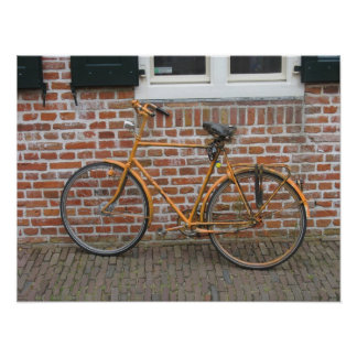 Painted Bicycle Parked Photo Poster