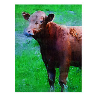 Painted Brown Cow Postcard
