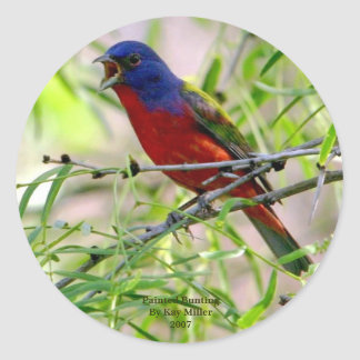 Painted Bunting By Kay Mil... Classic Round Sticker