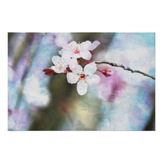 Painted Cherry Blossom Poster