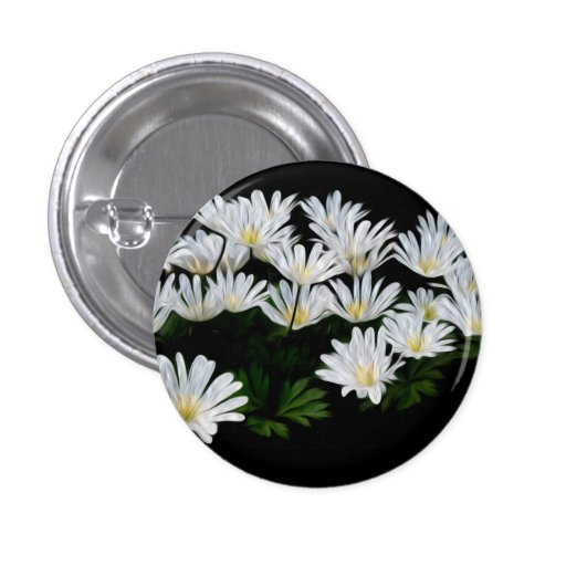 Painted Daisies Buttons