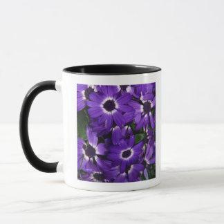 Painted daisies mug