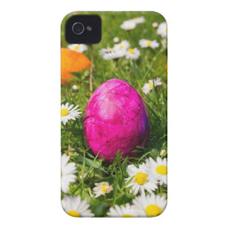 Painted easter eggs in grass with daisies iPhone 4 covers