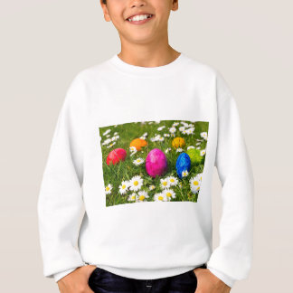 Painted easter eggs in grass with daisies sweatshirt
