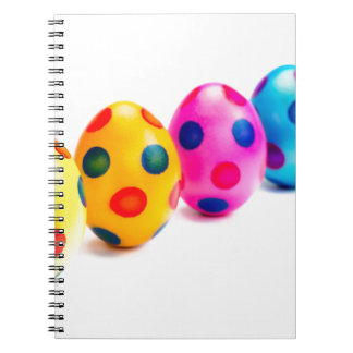 Painted easter eggs in row on white background notebooks