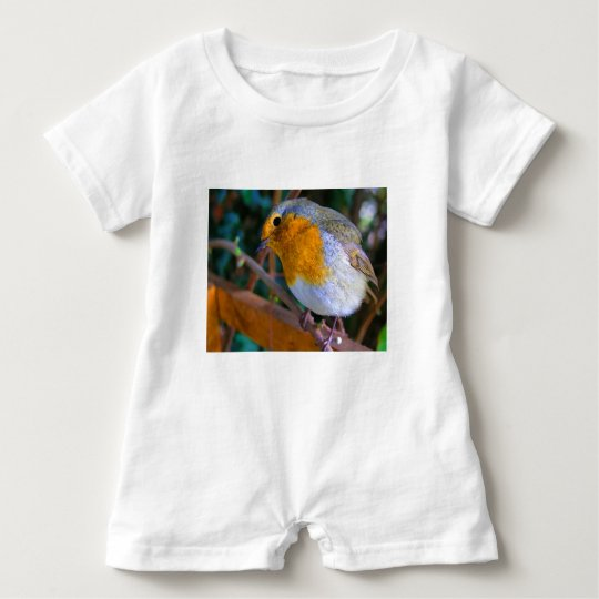 Painted Effect Robin Baby Romper