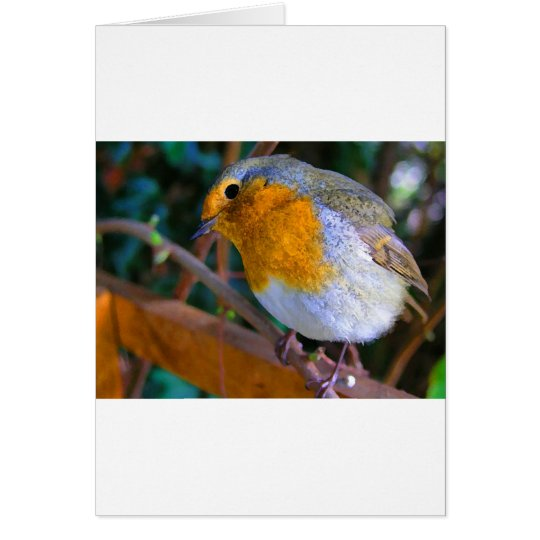 Painted Effect Robin Card