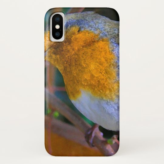 Painted Effect Robin Galaxy Nexus Covers