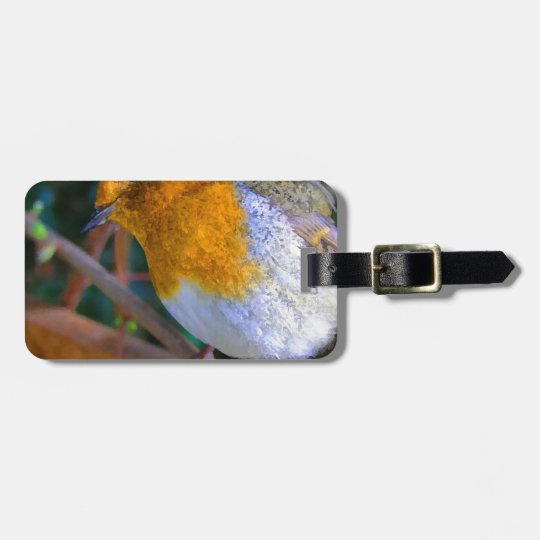 Painted Effect Robin Luggage Tag