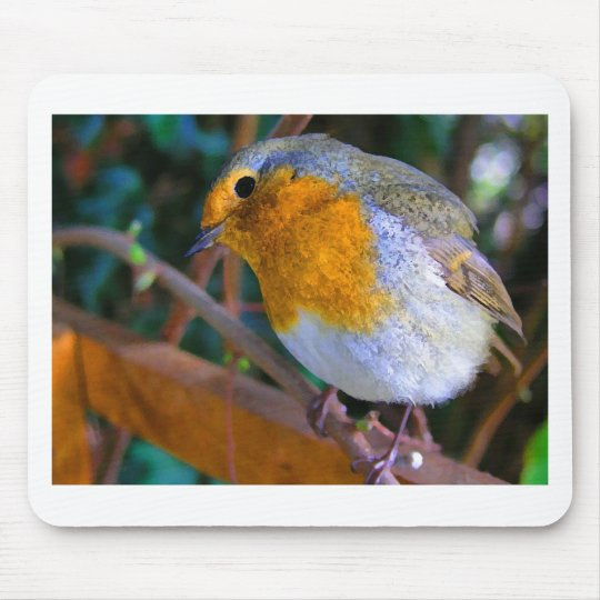 Painted Effect Robin Mouse Pad