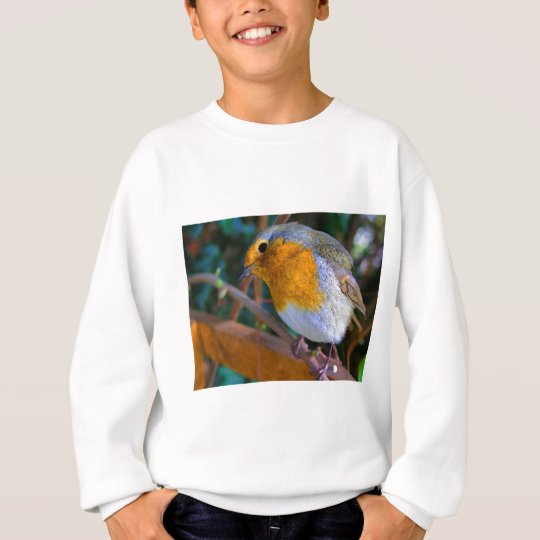 Painted Effect Robin Sweatshirt