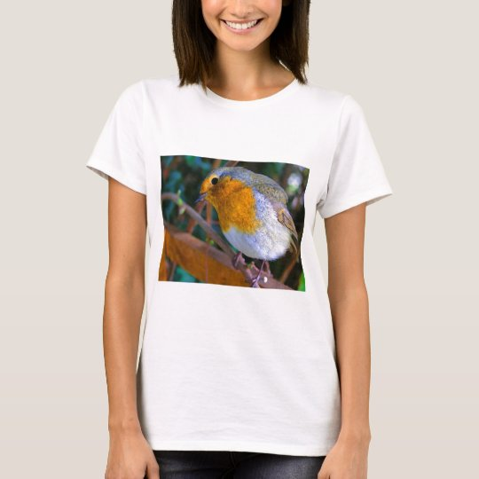 Painted Effect Robin T-Shirt