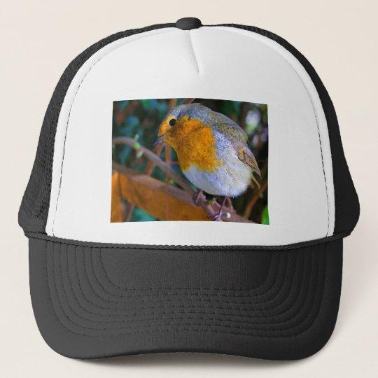 Painted Effect Robin Trucker Hat