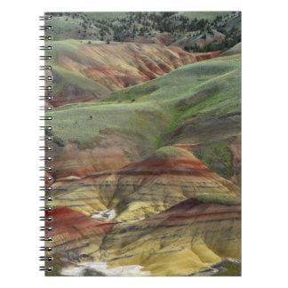 Painted Hills, John Day Fossil Beds, Mitchell Notebook