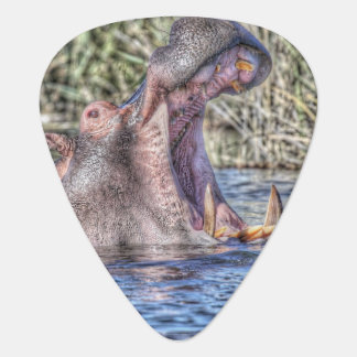 painted hippo guitar pick