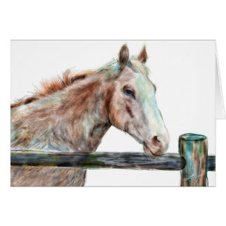 Painted Horse Greeting Card