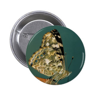 Painted Lady Butterfly Close-up 2 Inch Round Button