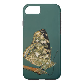 Painted Lady Butterfly Close-up iPhone 7 Case