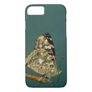 Painted Lady Butterfly Close-up iPhone 8/7 Case