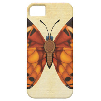 Painted Lady Butterfly iPhone 5 Cases