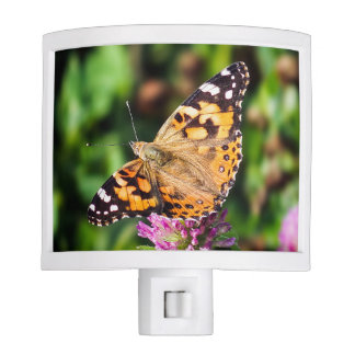 Painted Lady Butterfly Night Light