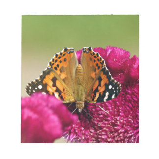 Painted Lady Butterfly Notepad