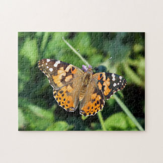 Painted Lady Butterfly Puzzle