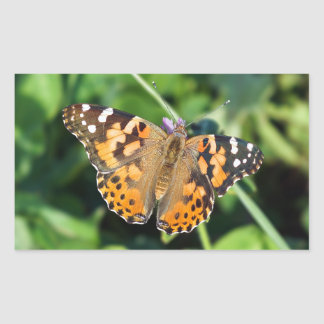 Painted Lady Butterfly Rectangle Sticker