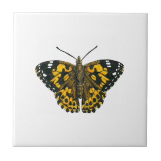 Painted lady butterfly tile