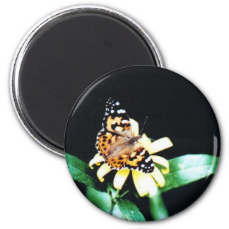 Painted Lady Magnet