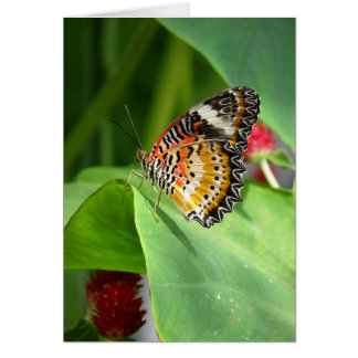 painted leopard ~ 2009 butterfly series card