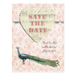 Painted Peacock Elegant Pink Damask Save the Date  Postcard
