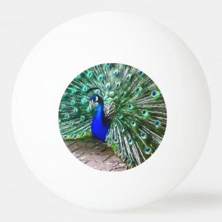 painted peacock Ping-Pong ball