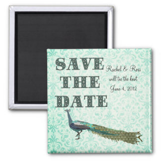 Painted Peacock Save the Date Turqoise Damask Magn Square Magnet