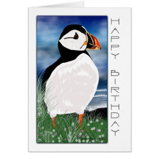 Painted Puffin Birthday Card - Birthday Card With