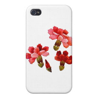 Painted Red & Pink Carnations iPhone 4 Cover