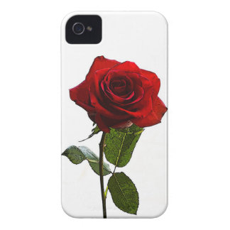 Painted Rose Blackberry Bold Case
