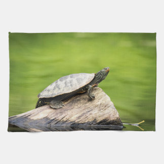 Painted Turtle on a log Kitchen Towel