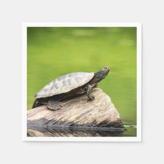 Painted Turtle on a log Paper Napkins