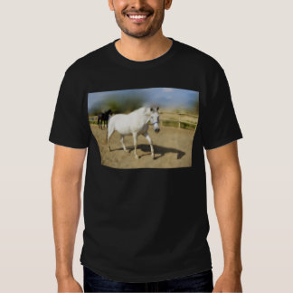 PAINTED WHITE HORSE T-SHIRT